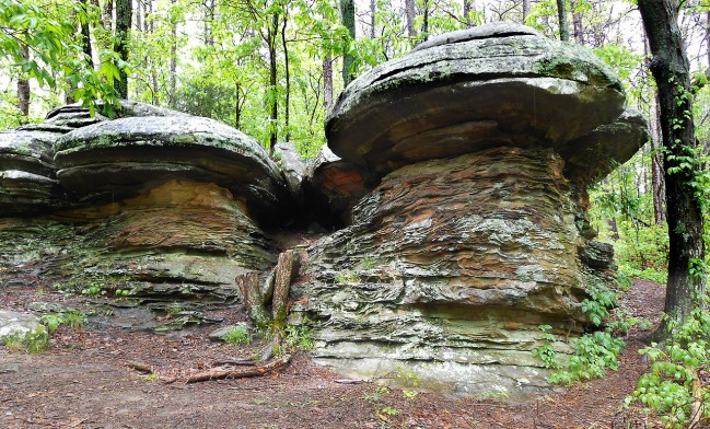 Mushroom_shaped_rock_formations_at_Garden_of_the_Gods_Shawnee_National_Forest_Illinois-1