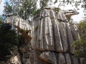 rock-trail-formation-camel-jungle-park-836565-pxhere.com