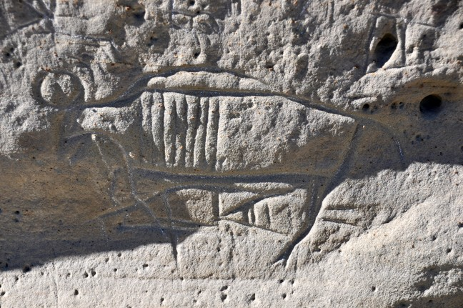 Ancestral_Shoshone_Indian_petroglyph_(~1000_to_~200_years_old)_(White_Mountain_Petroglyphs,_southwestern_Wyoming,_USA)_2_(22865235665)